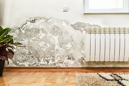 How To Prevent Mold With Proper Home Ventilation