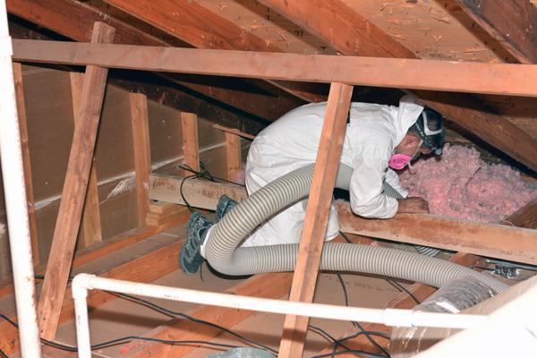 removing-insulation