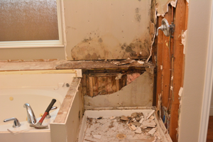 Mold damage in a bathroom