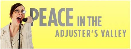 a banner image showing an insurance adjuster on the phone and says peace in the adjuster's valley