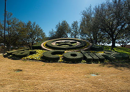 The Las Colinas Flower Clock is a fully-functioning timepiece that is decorated with fresh flowers and greenery year-round in Irving, TX.