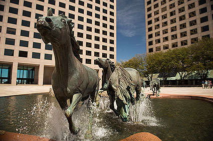 The Mustangs of Las Colinas is one of the largest equestrian sculptures in the world, consisting of nine bronze wild mustangs crossing a stream in Irving, TX.