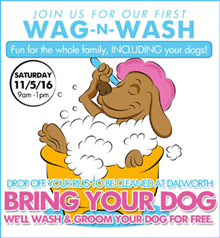 Dalworth Rug Cleaning Wag-n-Wash