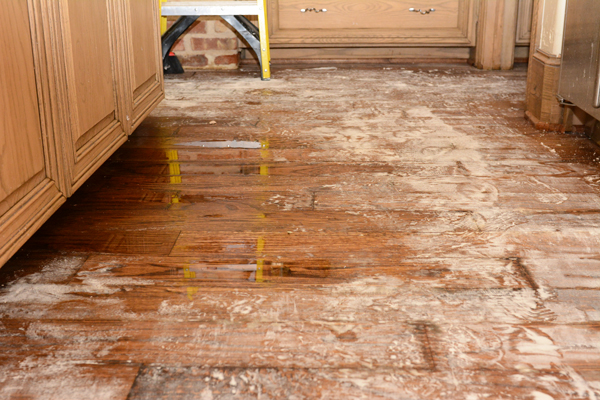 Dishwasher Leak Repair Services In Dallas And Fort Worth