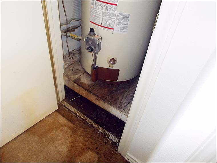 Signs of Water Damage in Dallas/Fort Worth